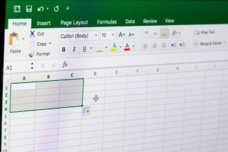 Essential Computer Skills: MS Excel Basics