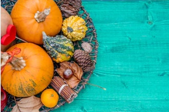 Hearty Fall Favorites