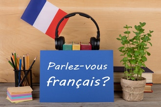 Destination France: French for Travelers