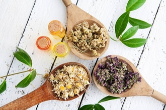 Herbs and Remedies For Clarity and Focus