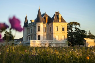 Bordeaux Basics with Bordeaux Wine Buyer Rand Sieger