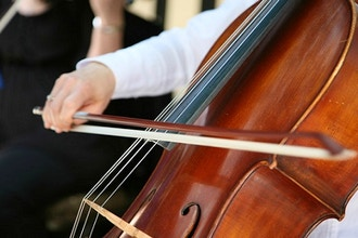 Cello Beginner 1