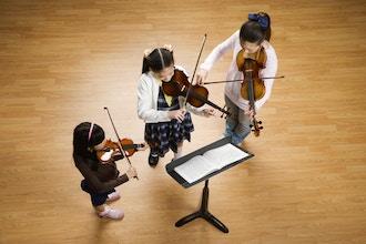 Violin Beginner 1