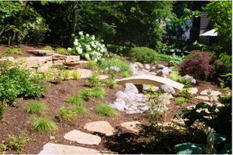 Do-It-Yourself Rain Gardens