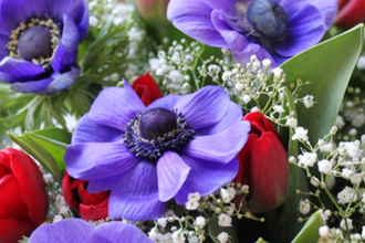 Disenos Florales I
