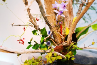 Ikebana: Japanese Art of Flower Arrangement (Advanced)