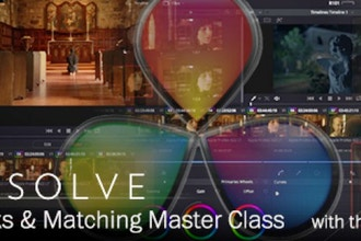 Resolve Looks and Matching Master Class