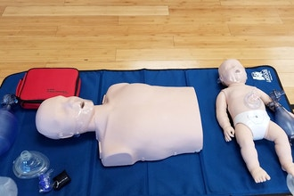 BLS (Basic Life Support) Provider