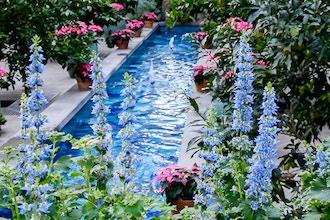 Fieldwork - Photography Basics @ U.S. Botanical Gardens