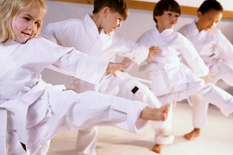 Kids Karate (Ages 3-4)