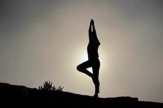 Accessible Alignment Yoga (Online)