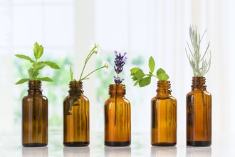 Virtual Essential Oils Basics