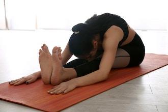 Virtual Stretching & Alignment