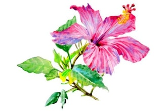 Virtual Advanced Watercolor Florals