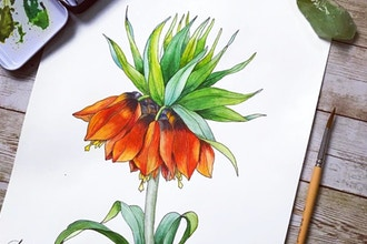 Virtual Realistic Botanical Drawing & Painting