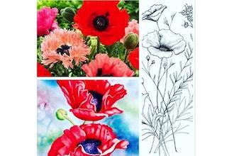 Virtual Realistic Botanical Drawing & Painting