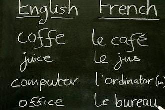 Beginning Conversational French - Level 1