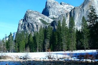 Yosemite Spring Fling Multi-Day Excursion