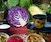 Making Probiotic Foods: Kefir, Kombucha & Cultured Veg
