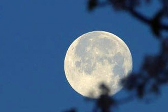 Moon Manifesting: A Tool for Conscious Creation