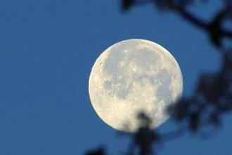 A Ripening Full Moon Circle