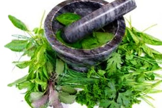 Herbs to Support the Nervous, Digestive & Immune Syst.