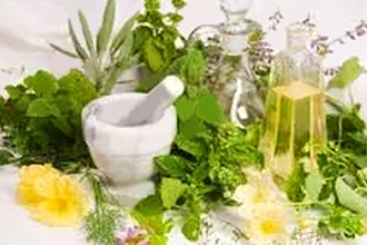 Green Medicine: A 4-Month Training in Herbalism