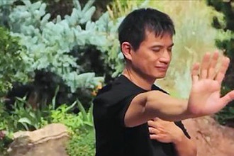 Qigong Secrets for Vitality and Creativity