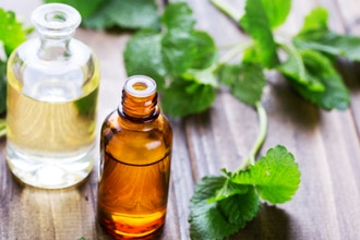 An Introduction to Herbal Medicine Preparation
