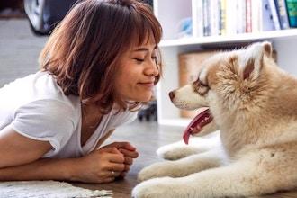 Free Intro: Theta Approach to Animal Communication 1&2