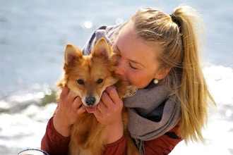 The Theta Approach to Animal Communication Level 1