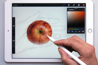 Introduction to Ipad Painting with Procreate