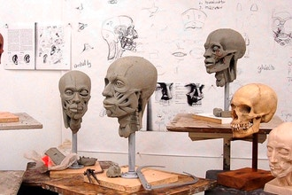 Anatomy of the Head: Constructing an Echorche
