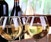 Essential Wines of Spain & Portugal