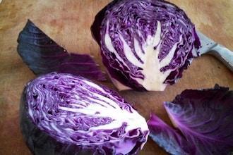 Food as Medicine: Vegetarian Basics
