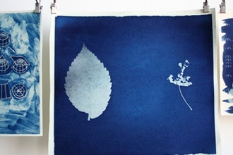 Cyanotypes: The Botany of Blue