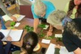 Feast on Flowers – Summer Edible Wild Plants