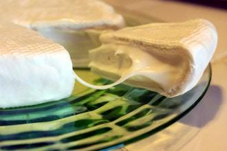 Intermediate Cheese Making – Camembert and Feta