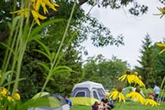 Adults-Only Campout