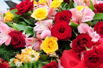 Get Started with Roses