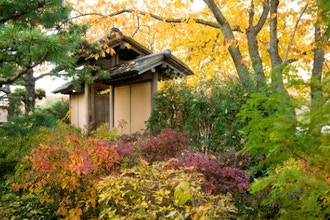 Malott Japanese Garden Walk in Autumn