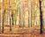 Deciduous Trees Walks