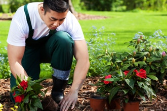 Hands-on Gardening: Mulching and Edging