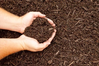Soils: Where Are Your Roots?