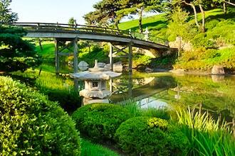 Photographing Bridges of the Garden