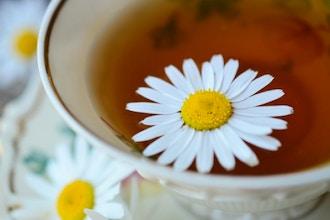 Tea and Health