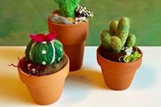 Felted Succulents and Cacti