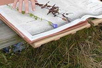 How to Prepare Herbarium Sheets