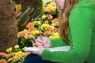 Sketchbook Skills in the Greenhouses