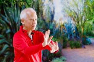 Tai Chi Experienced Sun-Style: Online